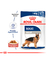 Royal Canin Pouch Maxi Adulto