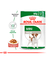 Royal Canin Pouch Mini Adulto