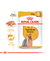 Royal Canin Pouch Yorkshire Adulto
