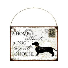 House whithout a dog