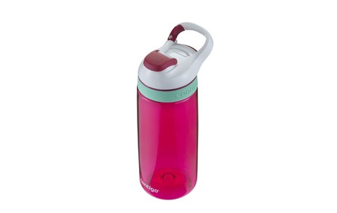 Contigo botella Courtney 590ml