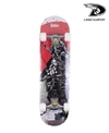 SKATE LAND SURFER 78639