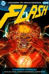 Flash vol. 4: Corriendo aterrado