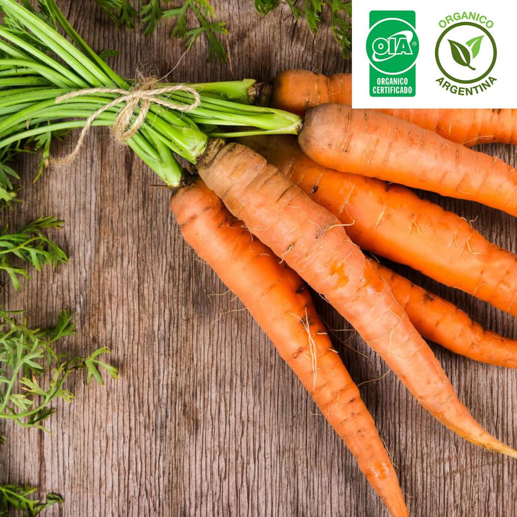 Zanahoria Organica X 1 Kg Comprar En Umaorganicos Cmo cultivar zanahorias ecolgicas el cultivo de la zanahoria, es muy interesante de realizar en nuestro huerto orgnico, ya que obtendremos como resultado las races comestibles de esta planta. zanahoria organica x 1 kg comprar en