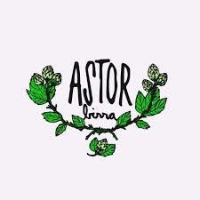 Robust Porter - Astor - 1 Litro - Botella descartable