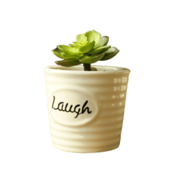 Maceta de Ceramica Laugh