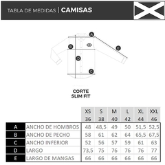 Rayas Finas Ratie Celeste y Blanca Camisa Fit Varias 3 RFRCyB RFRVyB (CFV0003) - Vicent