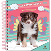 CADERNO 1X1 CD 80FL PET FSC - JANDAIA
