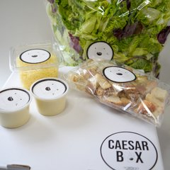 CAESAR BOX - Green-Go