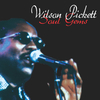 Wilson Picket - Soul gems