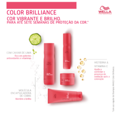 Imagem do Wella Professionals Invigo Color Brilliance Shampoo 250ml