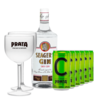 Gin Seagers 980ml + 6 Citrus Prata 269ml + 2 Taças