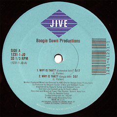 Boogie Down Productions ‎– Why Is That? - Vinil na internet