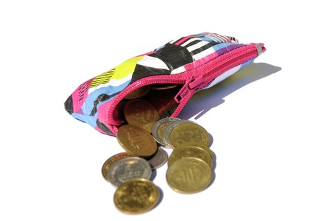 Purse for Coins by Monkey Wallets® - buy online