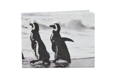 Tyvek® Wallets - Monkey Wallets® - Penguins