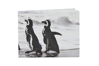 Billeteras de Papel Tyvek® - Monkey Wallets® - Pinguinos