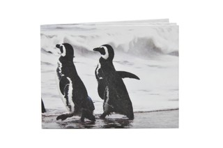 Carteiras de Papel Tyvek® - Monkey Wallets® - Pinguinos