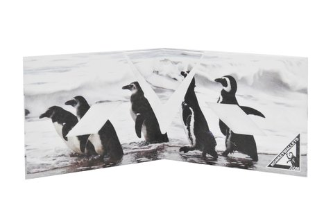 Carteiras de Papel Tyvek® - Monkey Wallets® - Pinguinos na internet