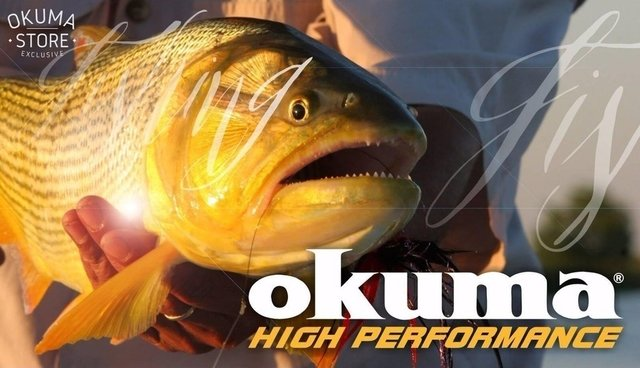 Reel Frontal Okuma Exide 50 - Ideal Variada Liviana en internet