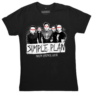 Simple Plan -  Picture