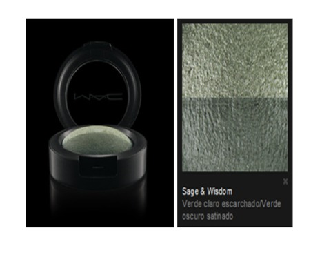 M.A.C. - Eye Shadow Sage  & Wisdom (DUO)