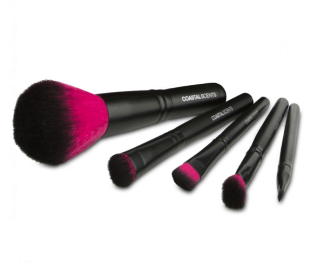 COASTAL SCENTS - COLOR ME FUCHSIA BRUSH SET – BR SET- 021