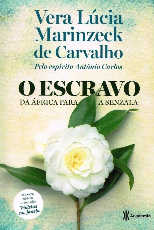 Vera Lucia Marinzeck De Carvalho Livros Pdf