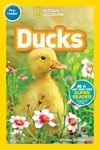 National Geographic Readers: Ducks