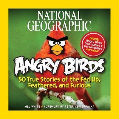 Angry Birds: 50 True Stories