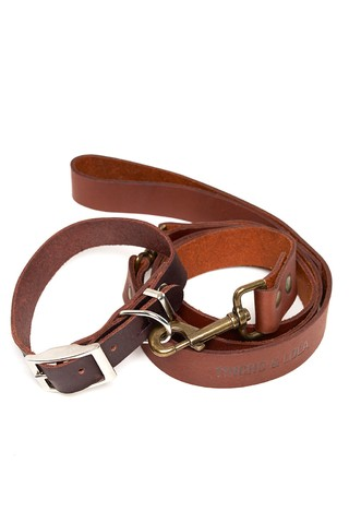 Collar + Leash Combo Dark Brown