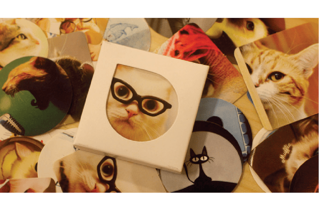 Stickers de gato en Cajta set