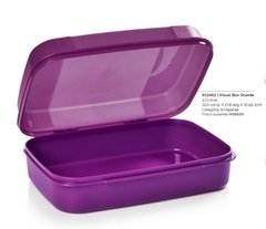 Visual Box 2,3l TUPPERWARE - comprar online