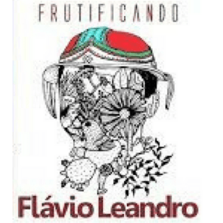 DVD (envelope) Flavio Leandro - Frutificando (Independente)