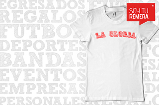 Remera Instituto - La Gloria