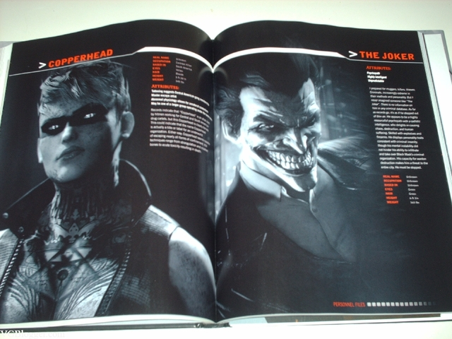 Libro: Batman - Arkham Origins Limited Edition Strategy Guide - tienda online