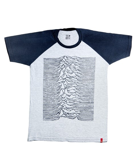 Unknown Pleasures | Raglan