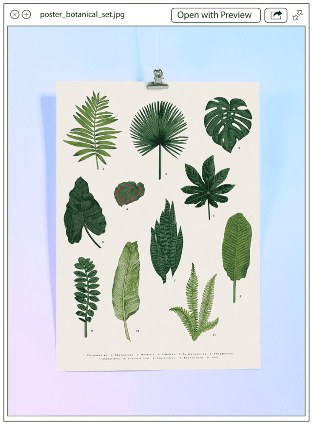 Poster Botanical Set