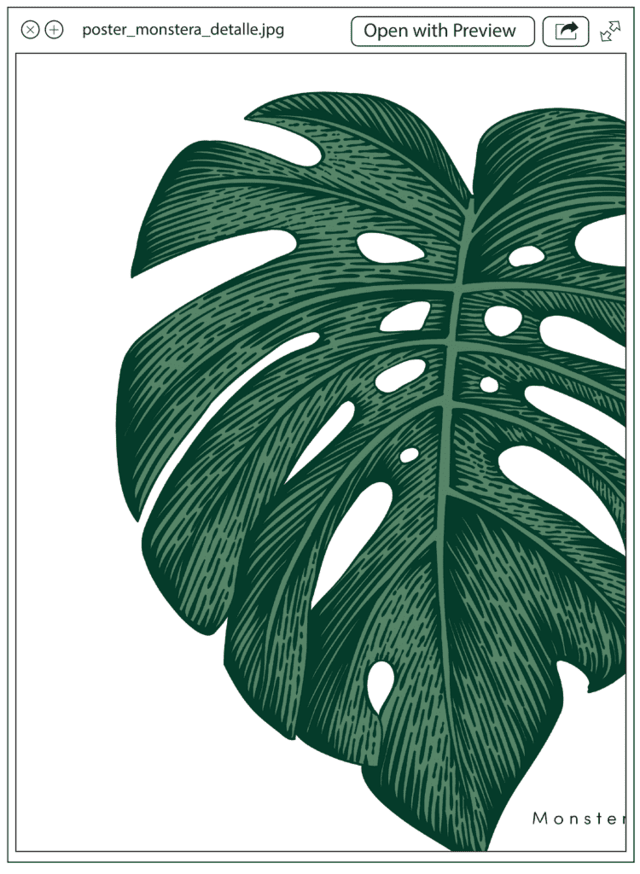 Poster Monstera en internet