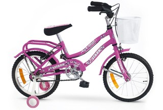 Bicicleta De Paseo Playera Dzx Women Full 6043 Rod.16 Gtía