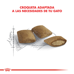 Royal Canin Cat Ageing +12 X 2 Kg - tienda online