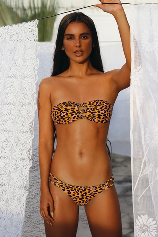 biquini bandeau animal print orange HB167 hy brasil