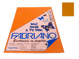 Papel Fabriano Copy Tinta 80 grs. A4 Blister x 20 u. color Cangrejo