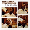 Muddy Waters - Folk Singer [LP]