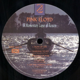 Pink Floyd - A Momentary Lapse of Reason [LP] na internet