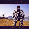 Pink Floyd - Delicate Sound of Thunder [LP Duplo]
