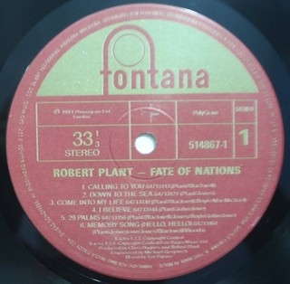 Robert Plant - Fate of Nations [LP] na internet