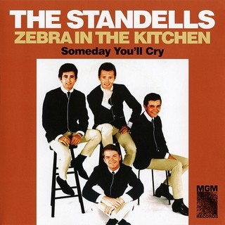 Standells - Zebra In The Kitchen [Compacto]