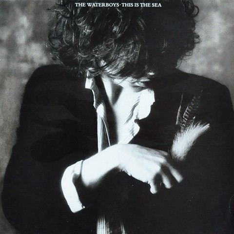 Waterboys - This Is The Sea [LP]