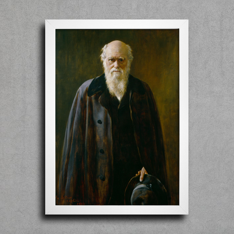 Collier - Portrait of Charles Robert Darwin