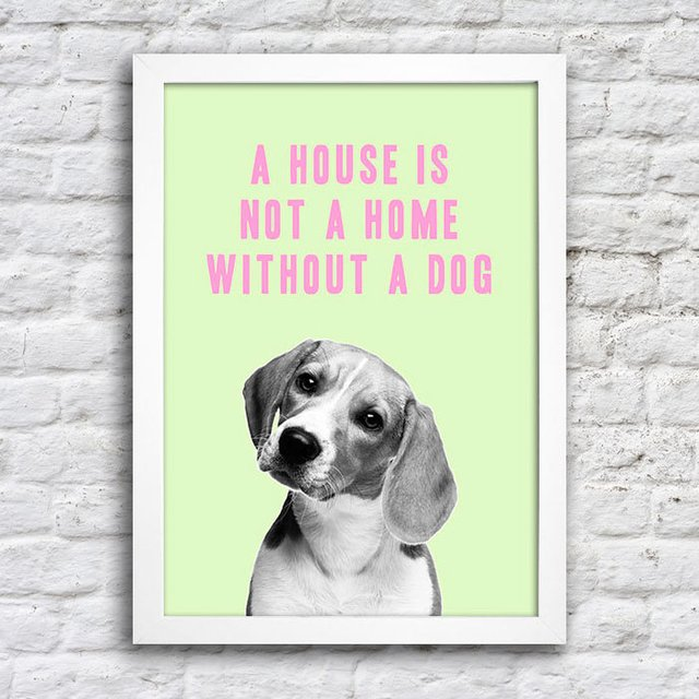 Poster A house is not a home without a dog na internet